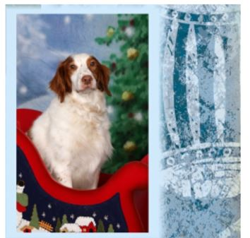Christmas in July (Santa Paws) (& July 2015 AnchoredScraps Recap)