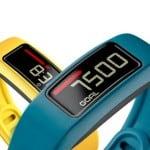 Garmin Vivofit2 (Activity Tracker)