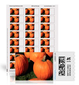 Pumpkin Patch NetStamps Labels