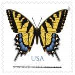 Cavallini Butterflies Carte Postale