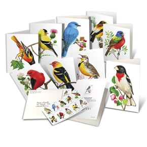 Songbirds Notecards