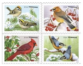 Upcoming Songbirds in Snow Forever Stamps