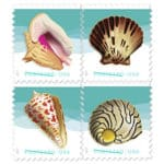 Beach Music and 2017 Seashells Postcard stamps