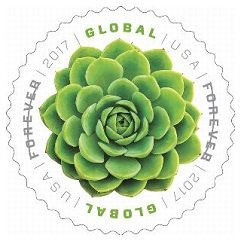 Global Forever 2017 Green Succulent, header image in my March 2017 AnchoredScraps Daily Blog Recap