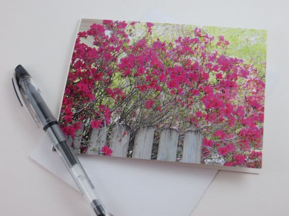 Azalea Note Cards Stationery by Rustic Barn Studio