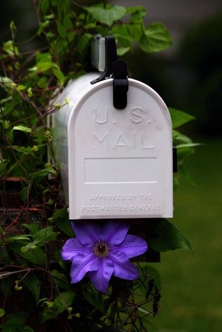 August Mailbox Letter Writing Follow-Up
