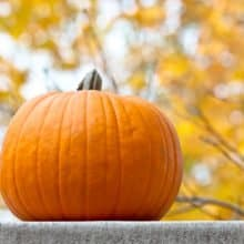 Trick-or-Treat October 2017 AnchoredScraps Daily Blog Recap