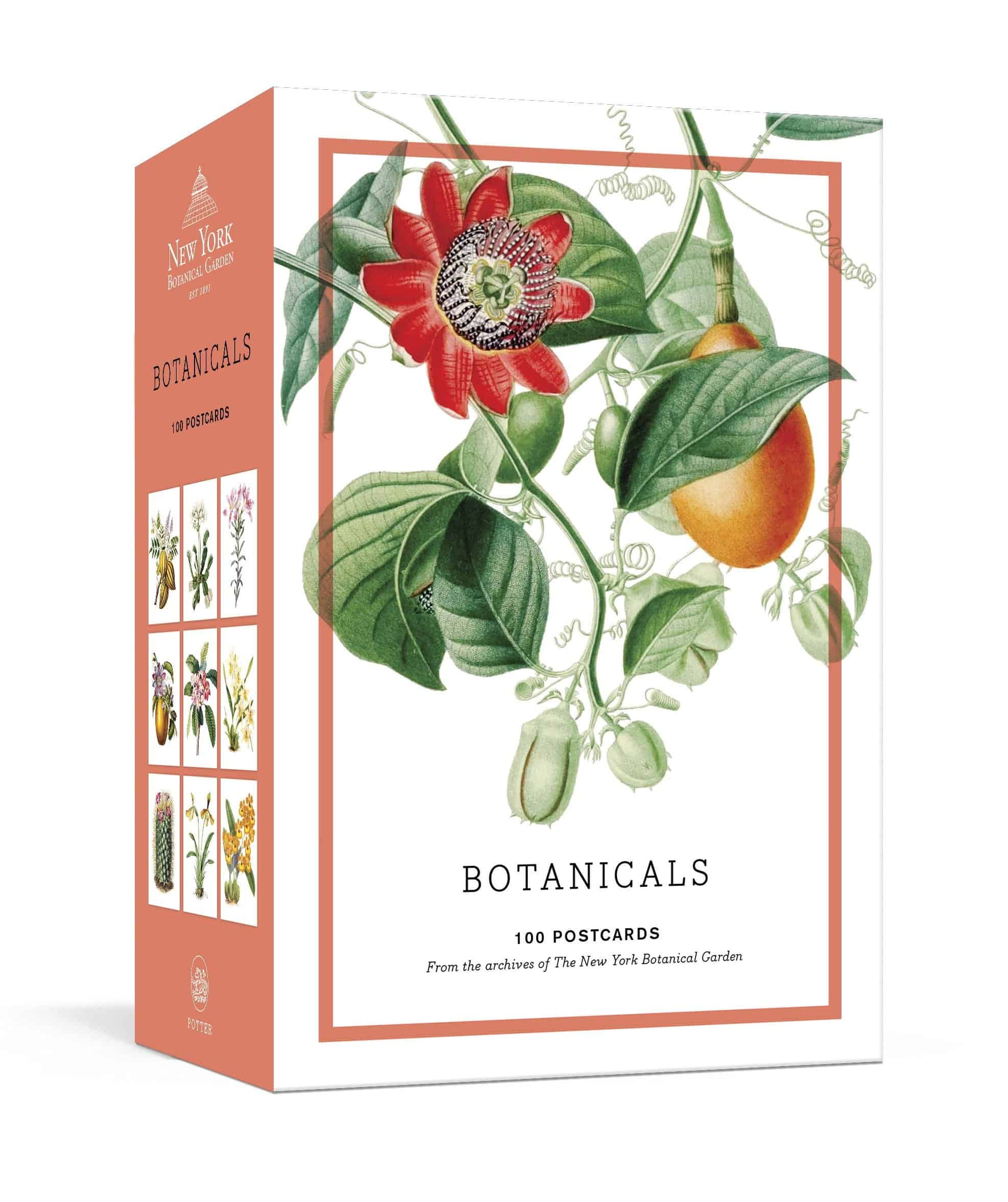 Botanicals 100 Postcards New York Botanical Garden