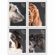 Pawsing for @PostVox Irish Dog Breeds 2016 Stamps