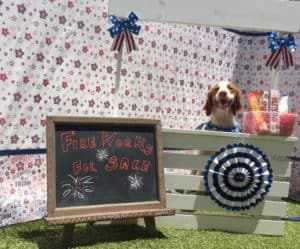 Cooper Happy July 4 2018