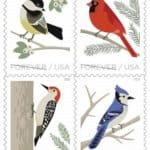 Birds In Winter Forever Stamps