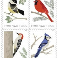 Upcoming Birds In Winter Forever Stamps