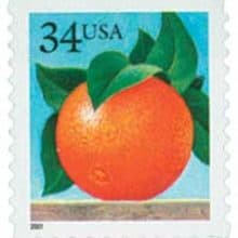 Orange You Glad … for Costco Returns Policy