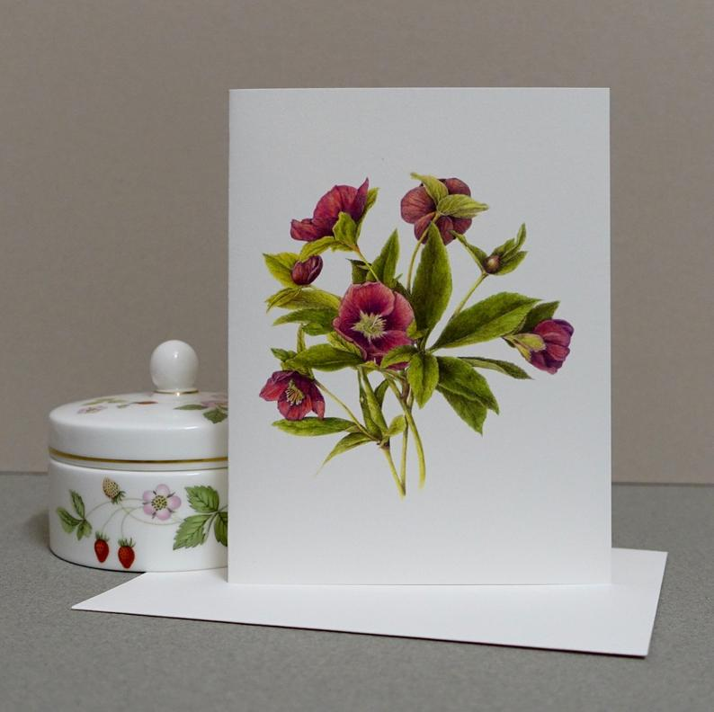 Perennial Flowering Stationery: Lenten Rose Botanical Note Card