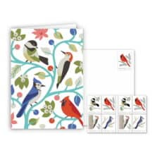 USPS Woodland Birds Notecards