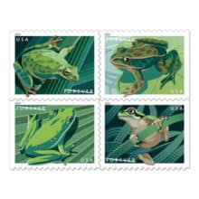 USPS North American Frogs Forever Stamps 2019
