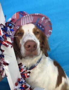 Coopers Happy July 4, 2019