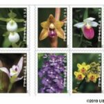 USPS Wild Orchids Stamps arriving February 21 2020