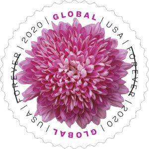 Chrysanthemum GlobalForever Stamp
