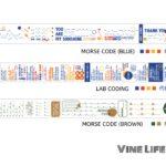 Morse Code Washi Tape
