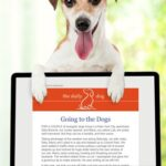 The Daily Dog Digital Devotional from Guideposts