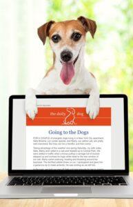 Daily Dog Digital Devotional
