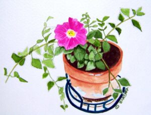 Petunia Watercolor Note Cards