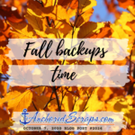 Fall time backups