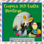 Cooper's 2021 Easter Greetings